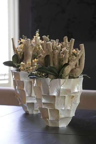 preus-kiel-textilpflanzen-3